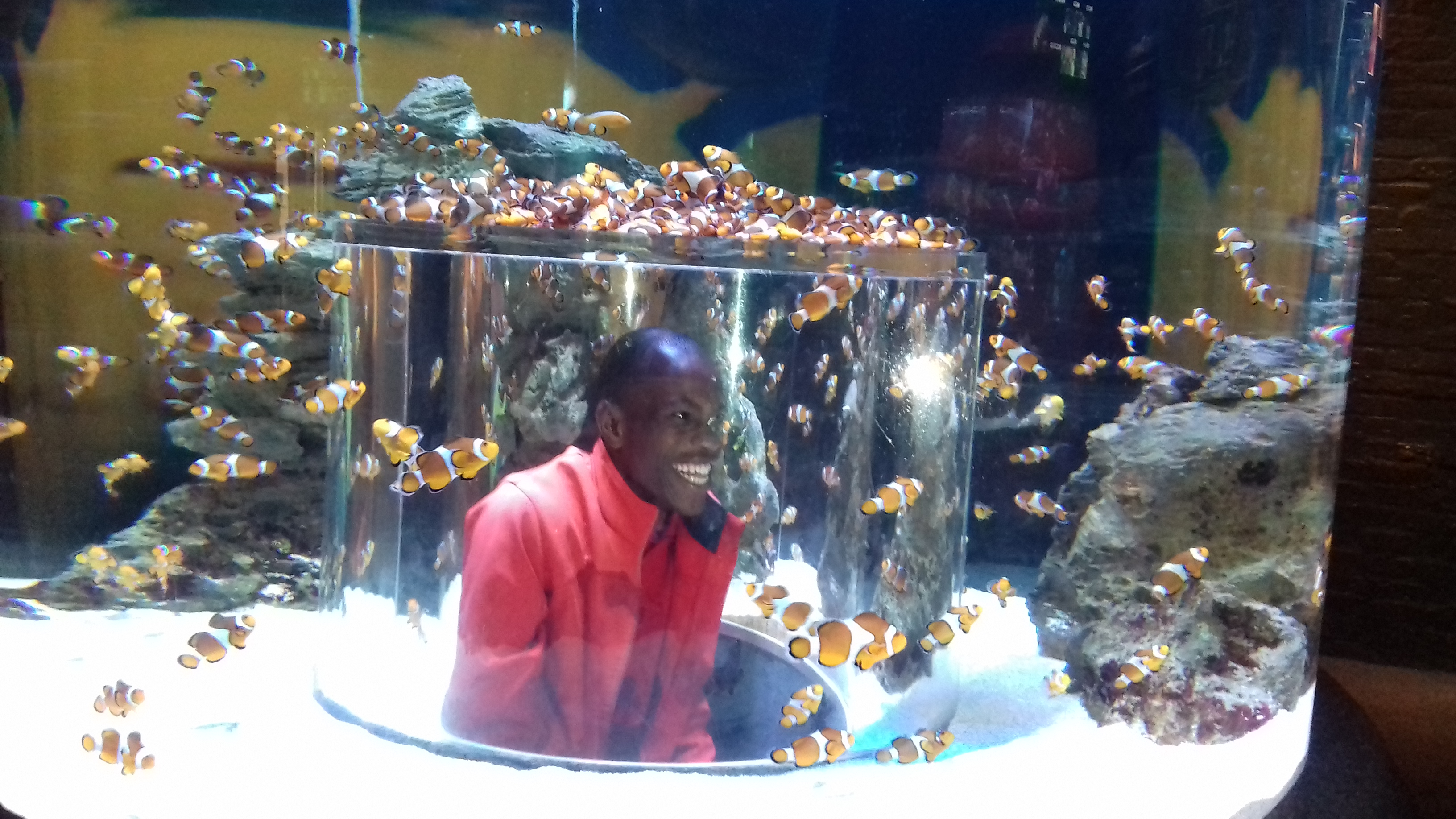 Percy Mthombeni, WaterWise Soweto enjoys the Nemo tank