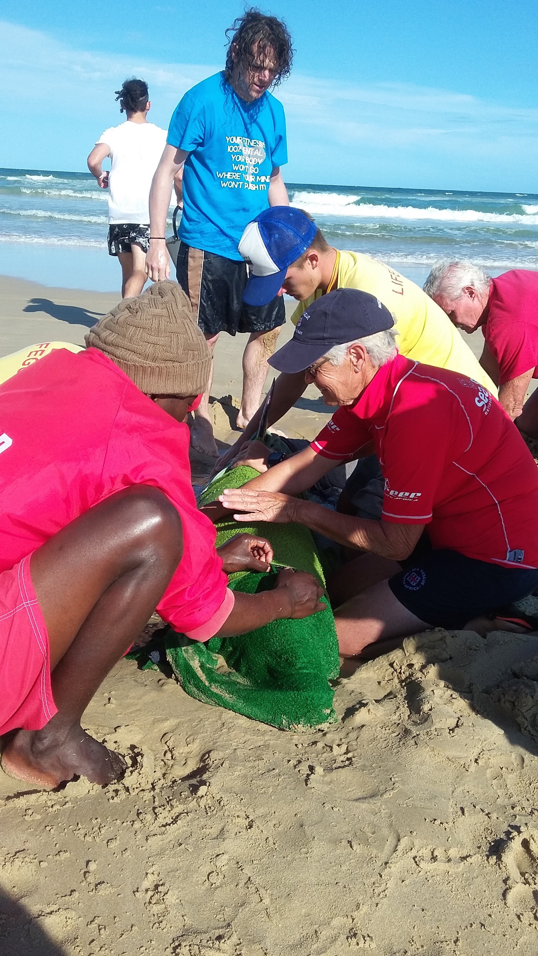 By NSRI Jeffreys Bay. Shows the injured dolphin being cared for at Kabaljous Beach.