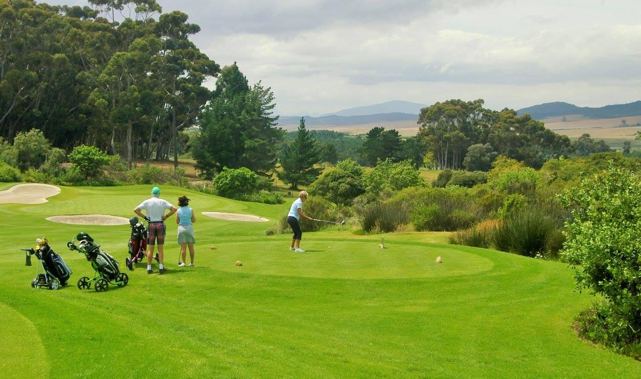 golf-day-3