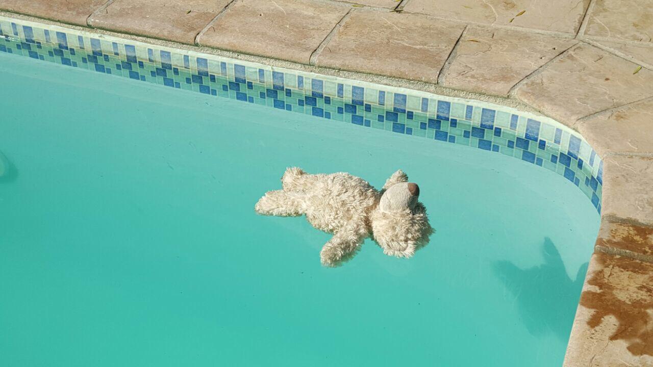 Pool 0194