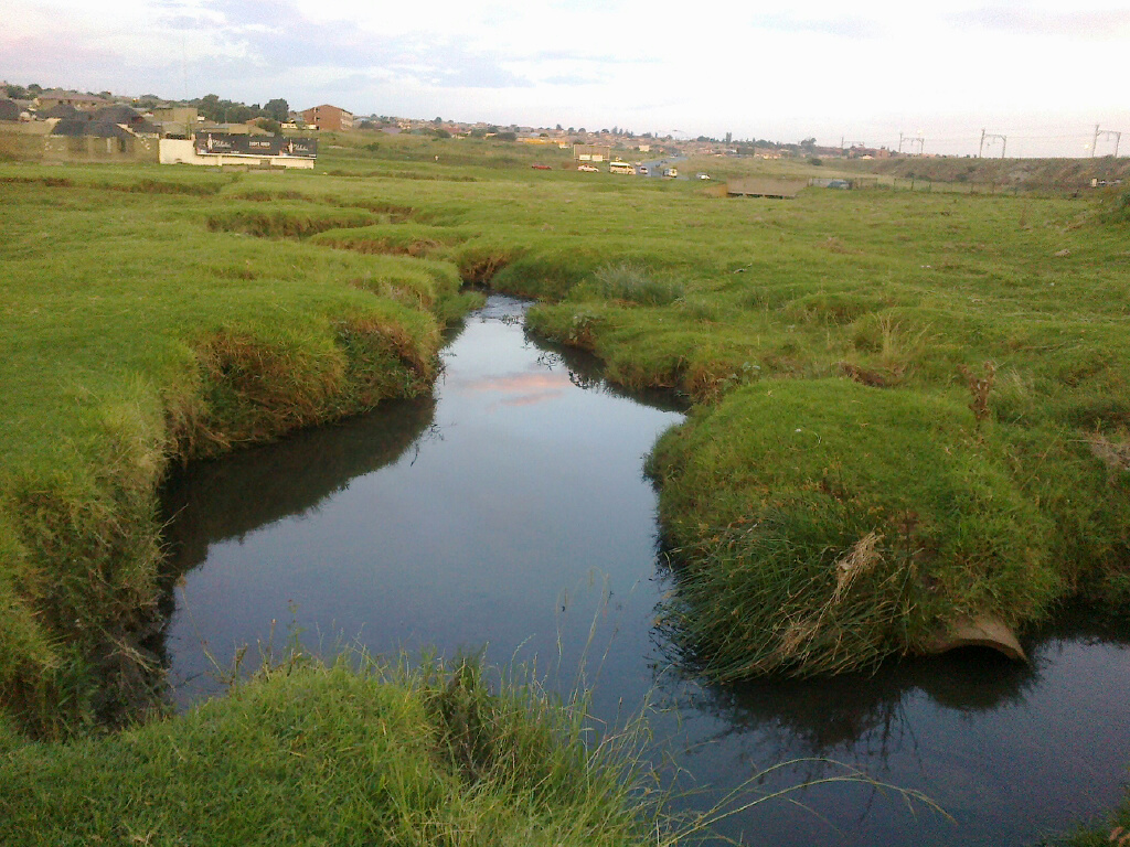 A child recently drowned in a deep pool in this stream in Soweto.
